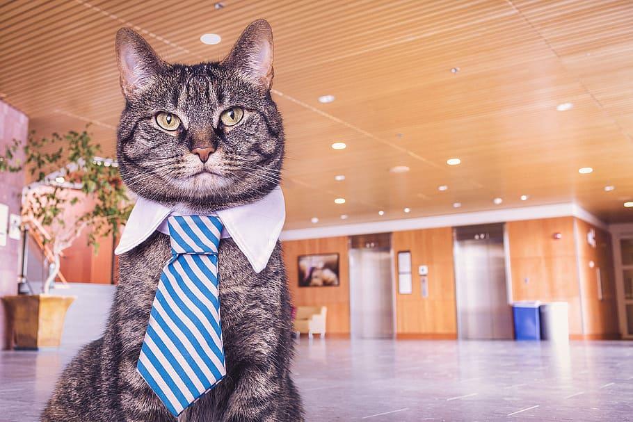 8 astuces pour une bonne transition de collègue à manager